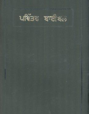 Bible (Punjabi)