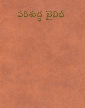 Bible (Telugu)