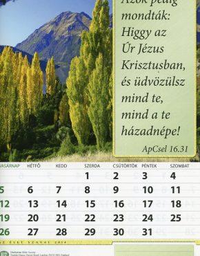 Calendar ~ TBS wall (Hungarian)