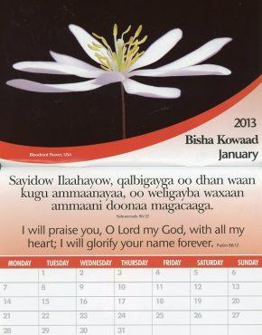 Calendar ~ Word of Life (Somali/English)