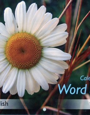Calendar ~ Word of Life  (Punjabi/English)