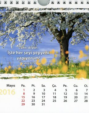 Calendar ~ postcard (Turkish)