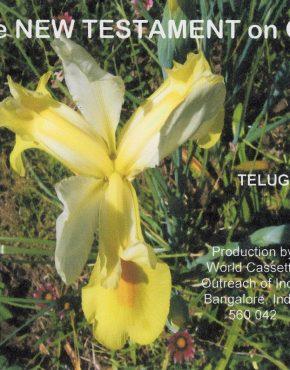 New Testament CD (Telugu)
