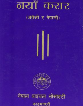 New Testament (Nepali/English)