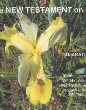 New Testament on CD (Gujarati)
