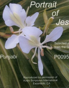 Portrait of Jesus CD (Punjabi)