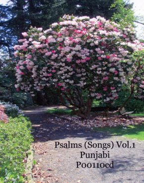 Psalms (Songs) Vol. 1 CD (Punjabi)