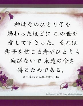 Scripture Text (Japanese)