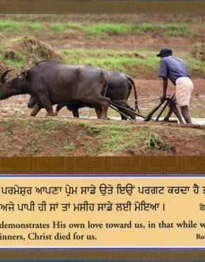 Scripture Texts (Punjabi)