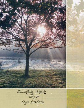 The Way of Salvation (Telugu)