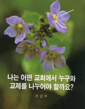 Which Church Should I Join? (Korean)